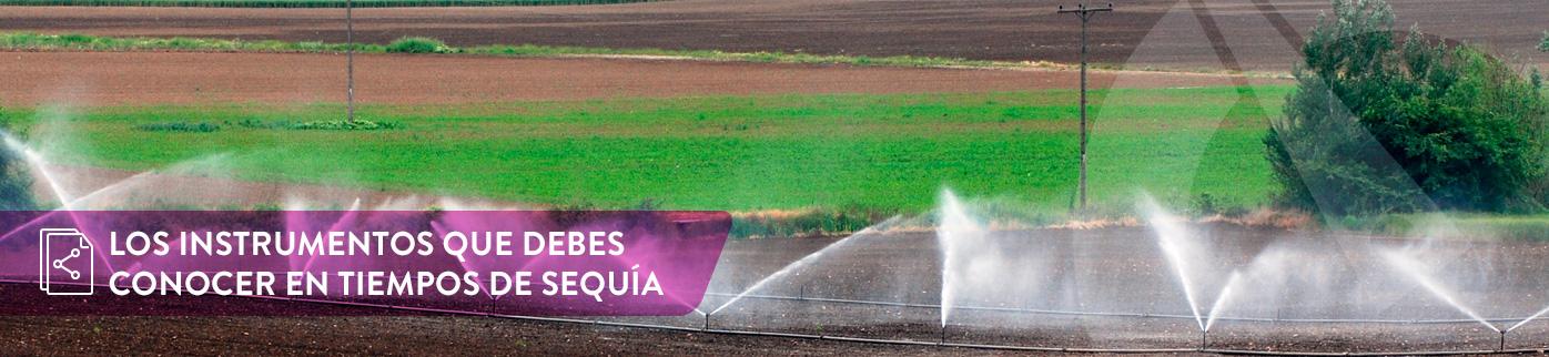 Los instrumentos que debes conocer en tiempos de sequía