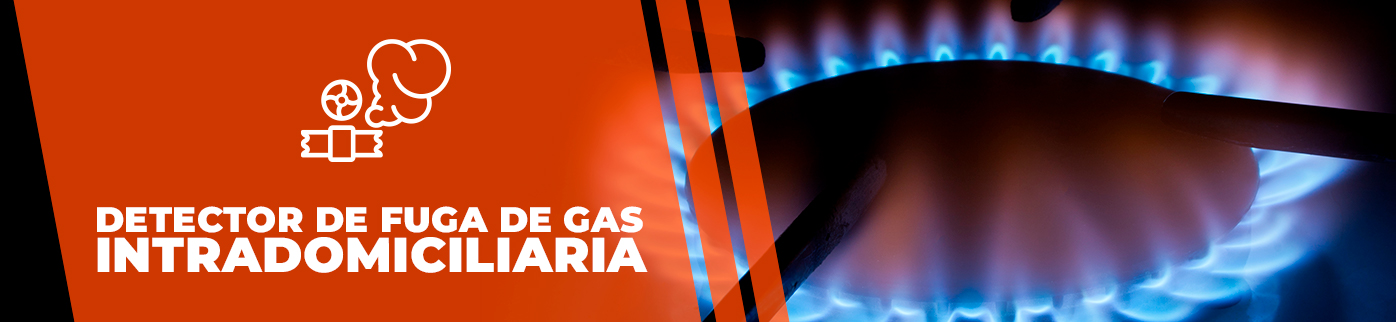 Detector de gas combustible